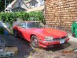 1987 Jaguar XJ12 Red Just The Brit